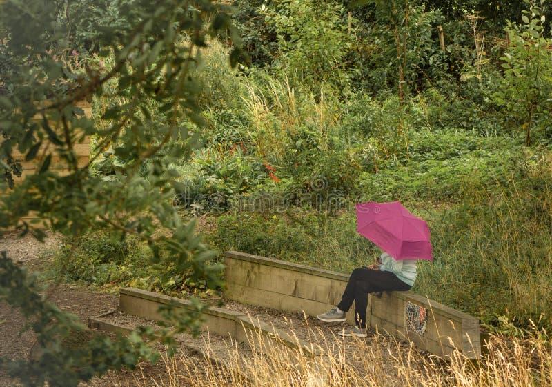 Muchacha con el paraguas rosado fotografía de archivo libre de regalías