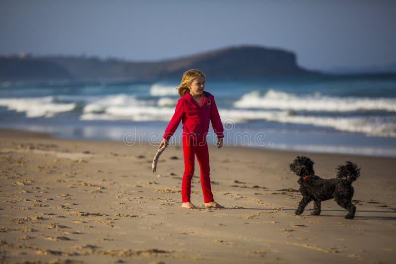 Muchacha con el perro en la playa fotos de archivo