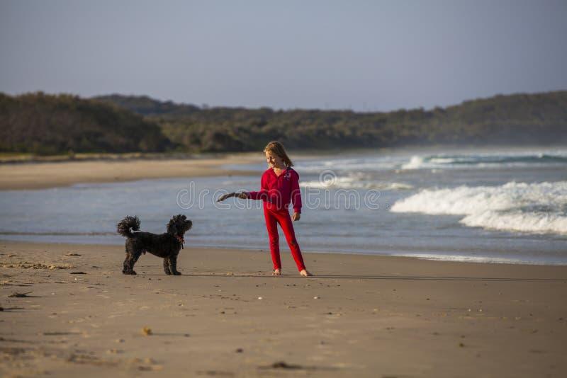 Muchacha con el perro en la playa imagen de archivo