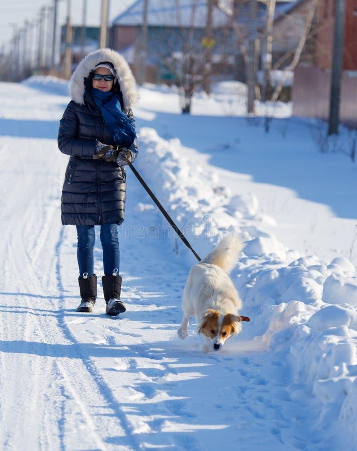 Muchacha con el perro en nieve en invierno foto de archivo