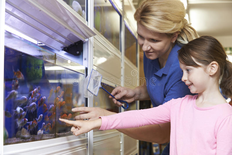 Muchacha con el pez de colores que elige auxiliar de las ventas en tienda del animal doméstico imagen de archivo