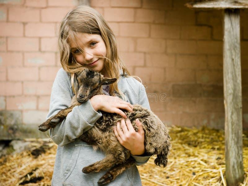 Muchacha con goatling fotografía de archivo