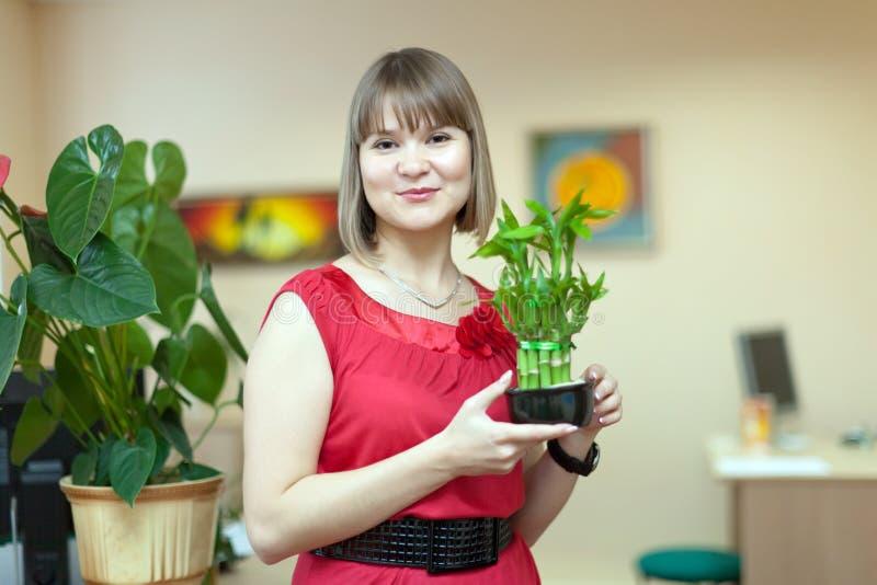 Muchacha con la planta de bambú foto de archivo libre de regalías