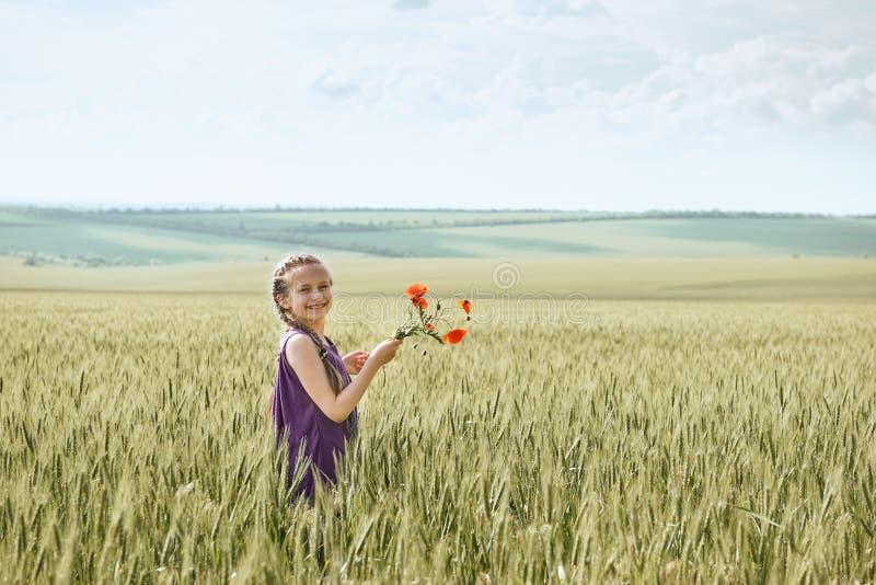 Muchacha con las flores rojas que presentan en el campo de trigo, sol brillante, paisaje hermoso del tulipán del verano imágenes de archivo libres de regalías