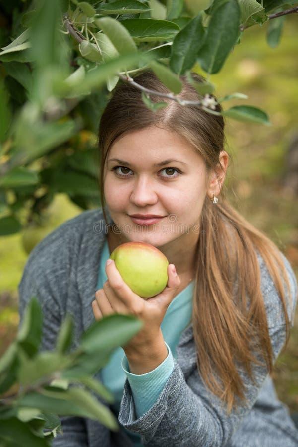 Muchacha con las manzanas foto de archivo