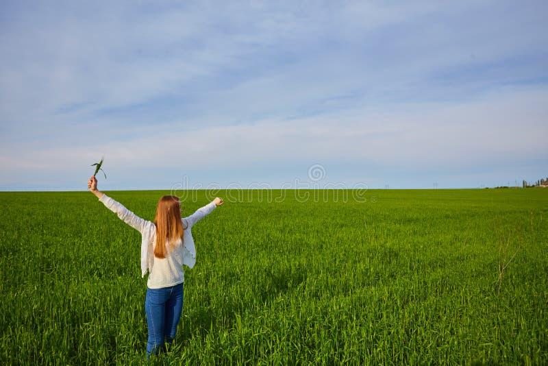 Muchacha con los brazos abiertos en un campo de trigo verde fotos de archivo libres de regalías