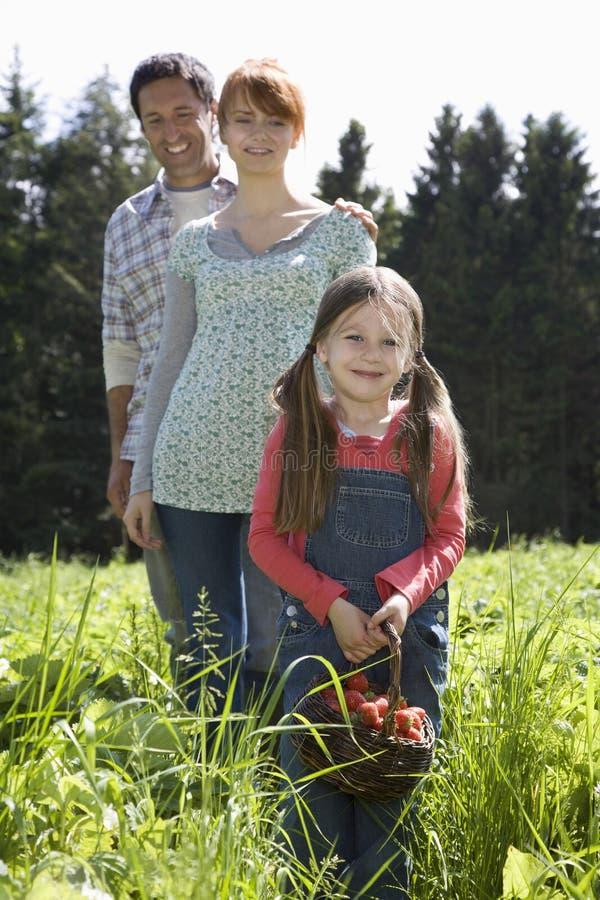 Muchacha con los padres en campo de la fresa imagenes de archivo