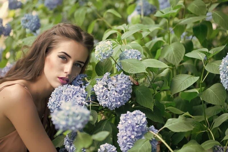 Muchacha con maquillaje cerca de las flores Retrato de la mujer bonita y de flores azules fotos de archivo