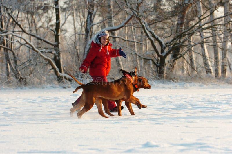 Muchacha con sus perros en nieve foto de archivo
