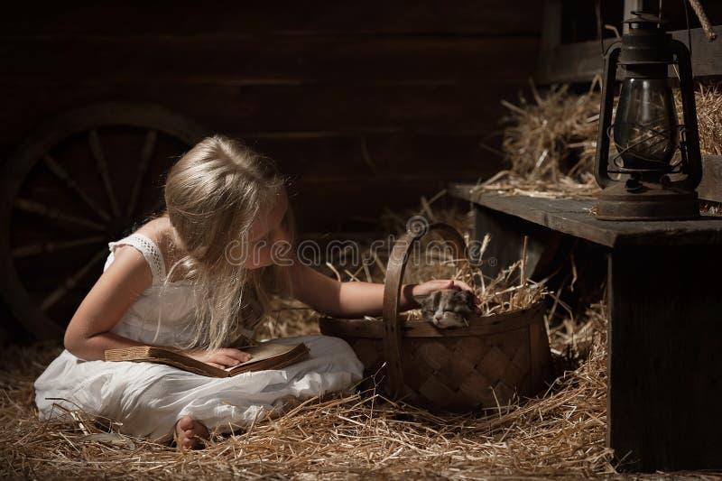 Muchacha con un gatito en el heno foto de archivo libre de regalías