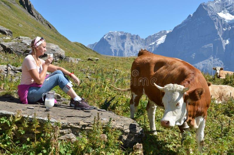 Muchacha con un jarro de la leche y de una vaca. imagen de archivo