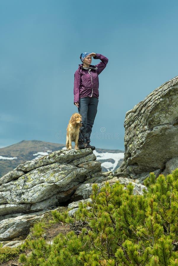 Muchacha con un perro en las monta?as, C?rpatos, imagen de archivo libre de regalías