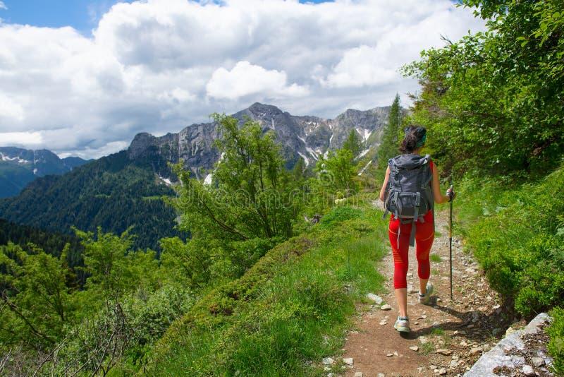 Muchacha con una mochila y polos durante un senderismo alpino solamente fotografía de archivo libre de regalías