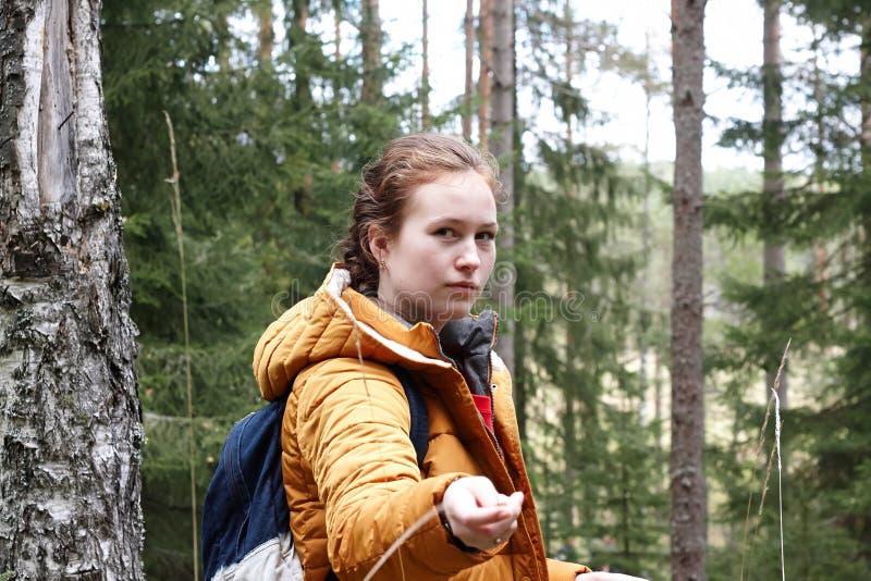 Muchacha con viajes rojos del pelo a través del bosque conífero foto de archivo libre de regalías