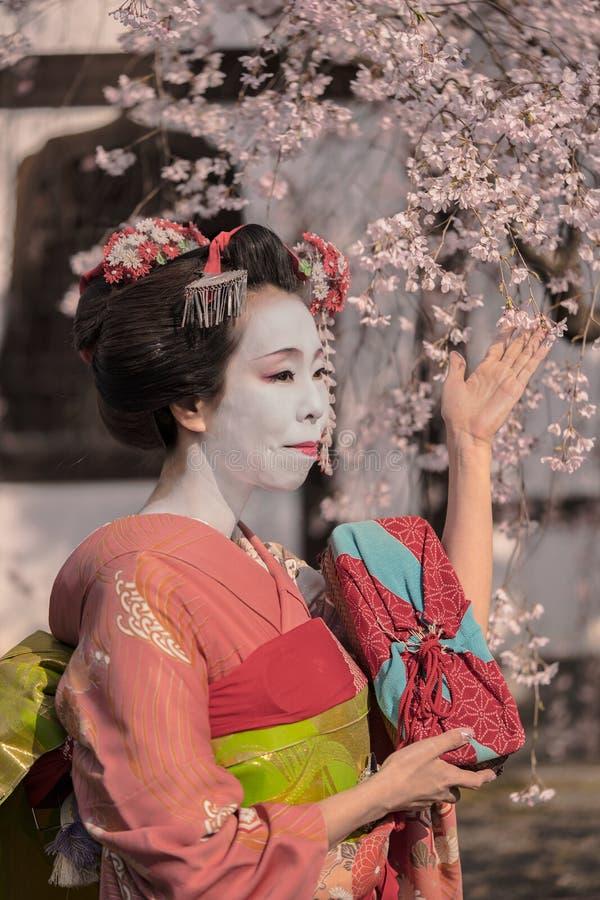 Muchacha de geisha en un kimono que presenta delante de un hous japonés tradicional imagen de archivo