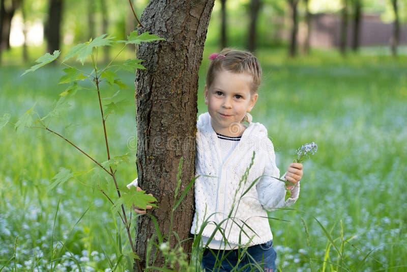 Muchacha de Ittle con un manojo de nomeolvides en su mano que mira a escondidas de detrás un árbol fotos de archivo