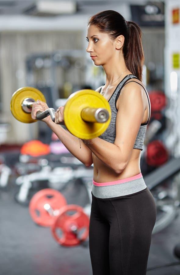 Muchacha de la aptitud que hace entrenamiento del bíceps con el barbell fotografía de archivo