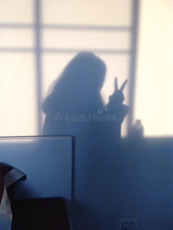 Muchacha de la lucha de la sombra fotos de archivo libres de regalías