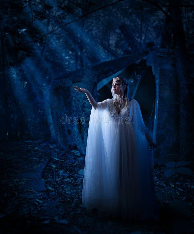 Muchacha del duende en bosque de la noche fotos de archivo