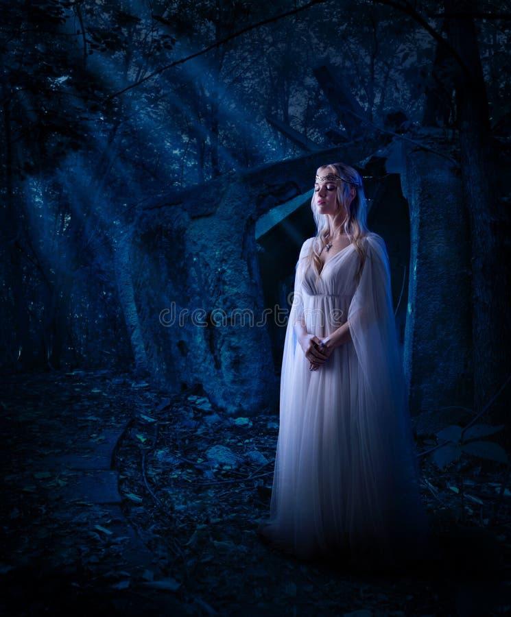 Muchacha del duende en la versión del bosque de la noche imagen de archivo libre de regalías