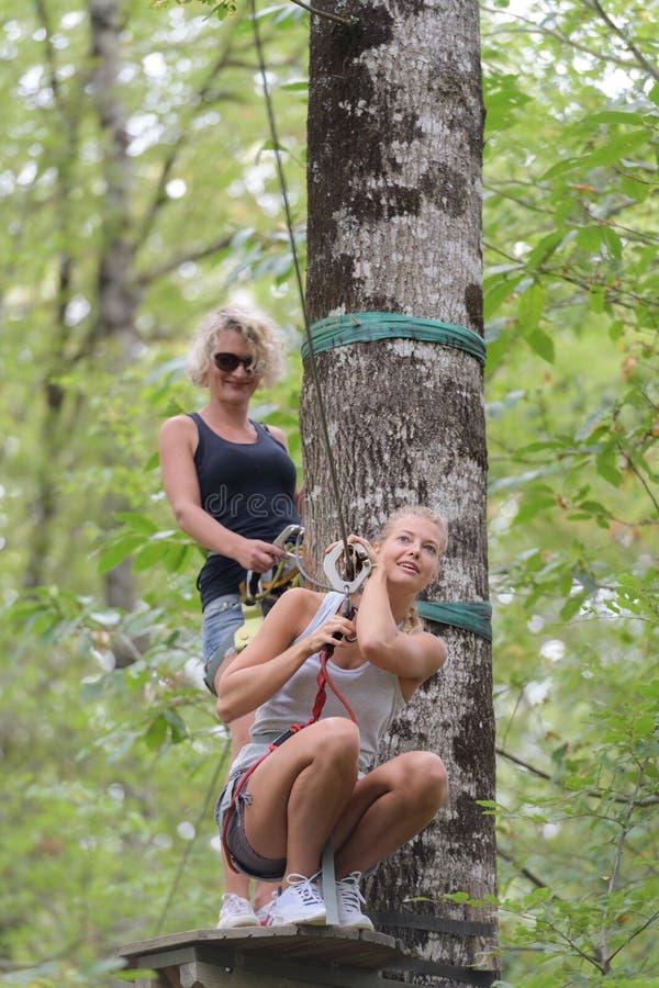 Muchacha del escalador contratada al entrenamiento entre los árboles imagen de archivo libre de regalías