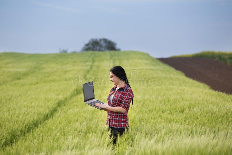 Muchacha del granjero con el ordenador portátil en campo imagen de archivo