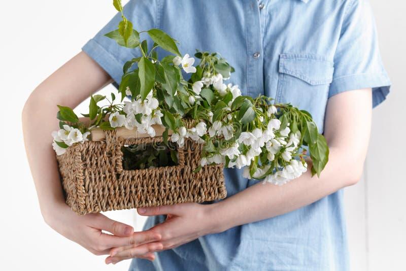 Muchacha del inconformista en el vestido de lino rústico que sostiene las flores grandes del manzano en cesta de mimbre en el fon fotografía de archivo