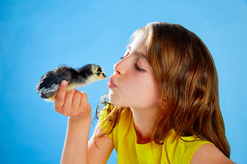 Muchacha del niño con los polluelos que juegan en azul fotografía de archivo libre de regalías
