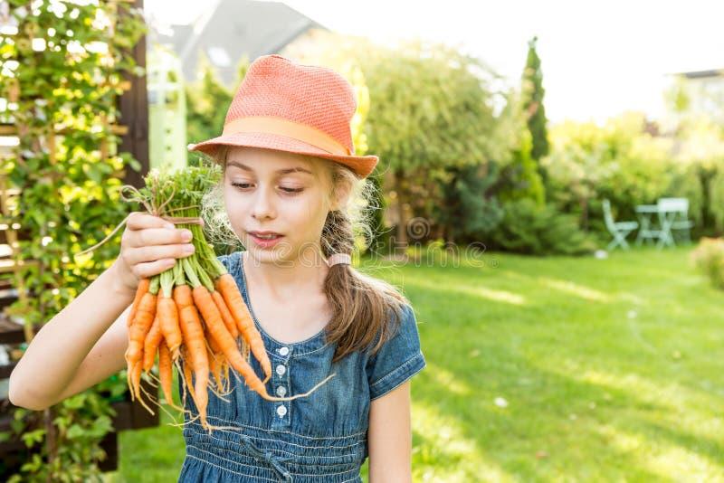 Muchacha del niño que sostiene el manojo de zanahorias jovenes en el jardín imágenes de archivo libres de regalías