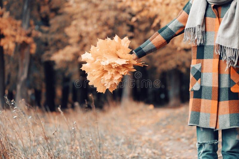 Muchacha del otoño que camina en parque de la ciudad Retrato de la mujer joven preciosa y hermosa feliz en bosque en colores de l imagen de archivo