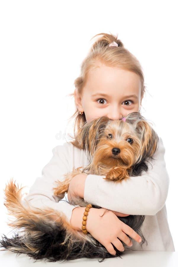Muchacha del preescolar y su terrier de Yorkshire del animal doméstico fotos de archivo libres de regalías