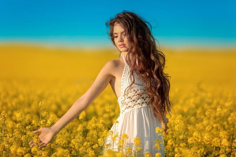 Muchacha despreocupada hermosa con el pelo sano rizado largo sobre fondo amarillo del paisaje del campo de la violación Morenita  fotos de archivo libres de regalías