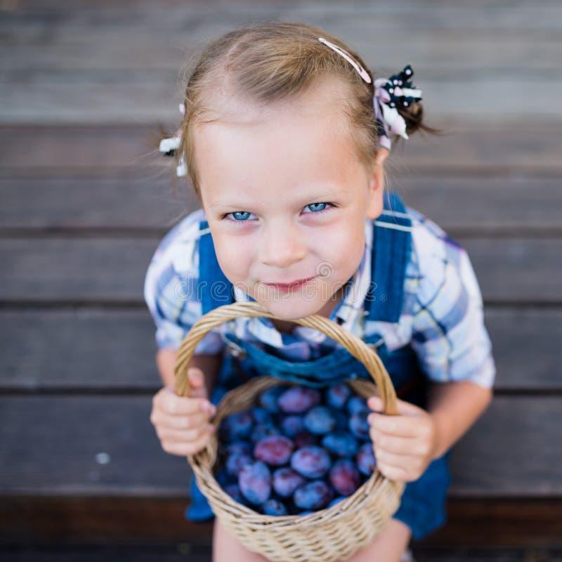 Muchacha divertida del pequeño niño con la cesta llena de ciruelos imágenes de archivo libres de regalías