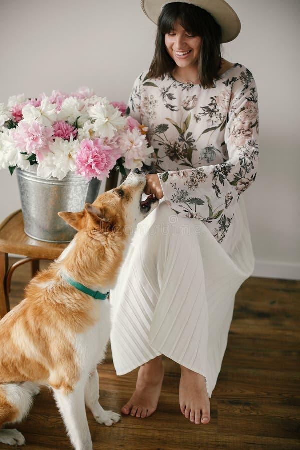 Muchacha elegante del boho que juega con el perro de oro lindo en el cubo del metal con las peonías en silla de madera rústica en fotos de archivo