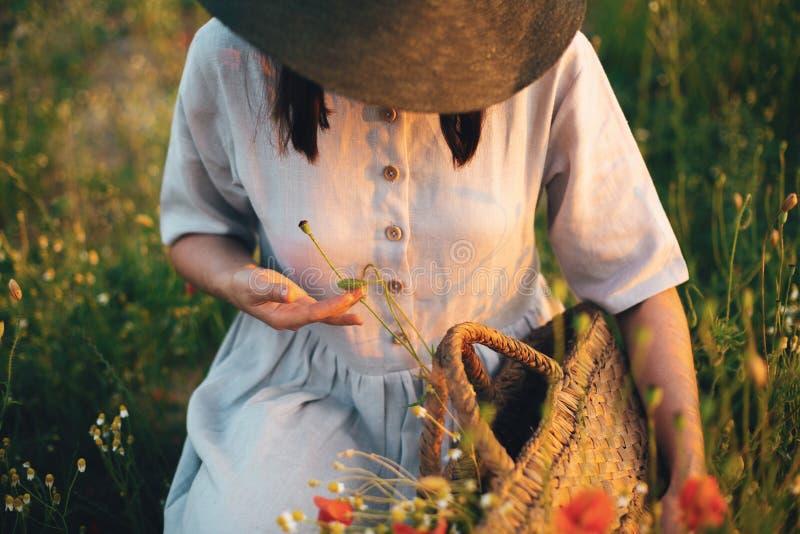 Muchacha elegante en el vestido de lino que recolecta las flores en la cesta r?stica de la paja, sent?ndose en prado de la amapol foto de archivo