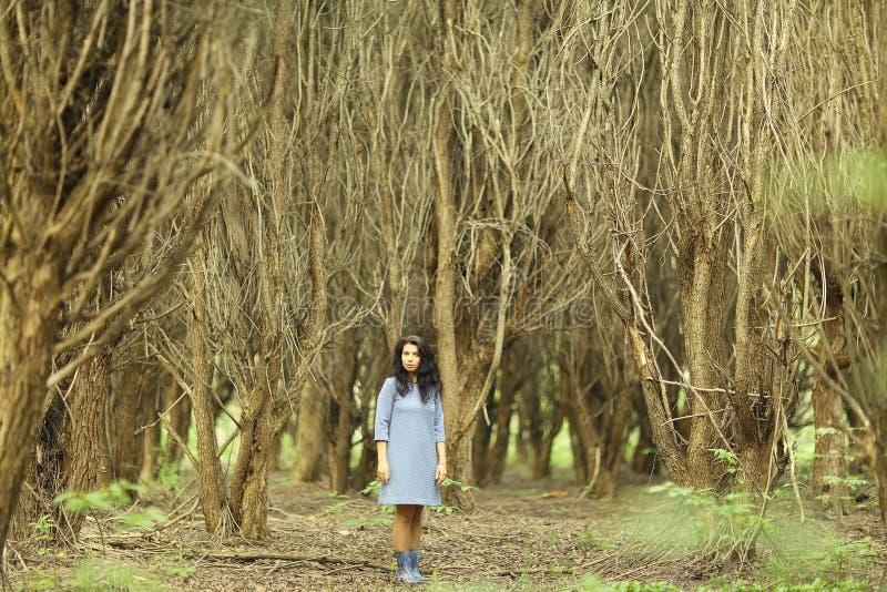 Muchacha en bosque de la primavera fotos de archivo libres de regalías