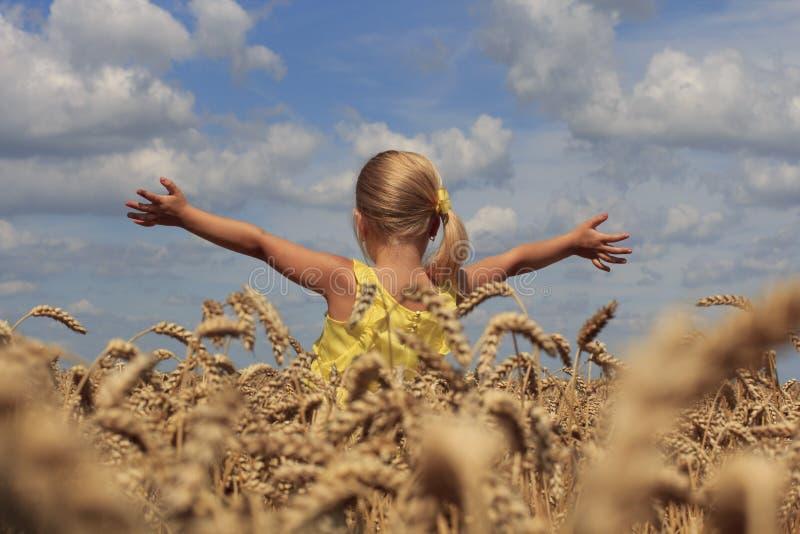 Muchacha en campo de trigo foto de archivo