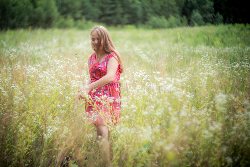 Muchacha en campo del verano foto de archivo