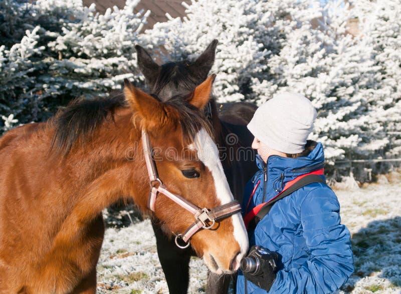 Muchacha en chaqueta azul con los potros en pasto escarchado fotografía de archivo libre de regalías