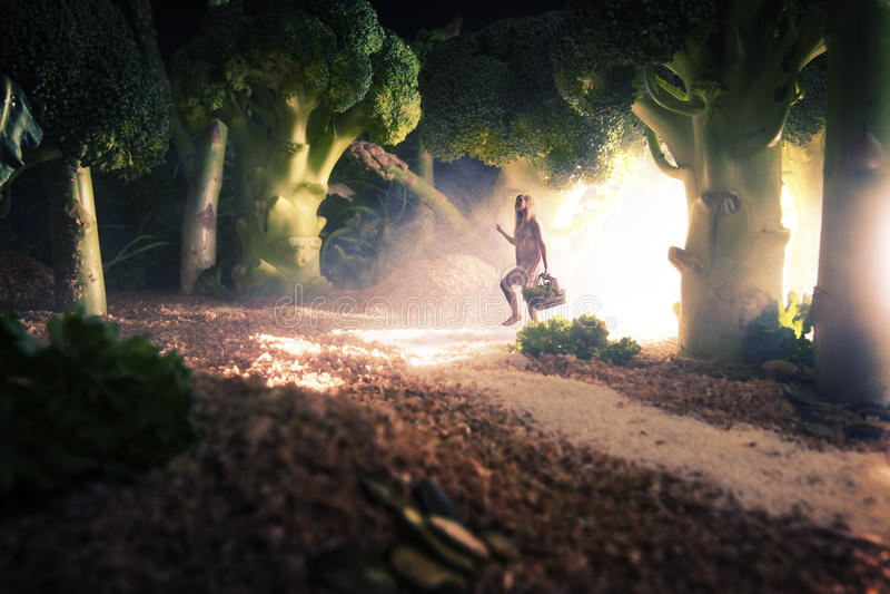 Muchacha en el bosque de la comida imagen de archivo libre de regalías