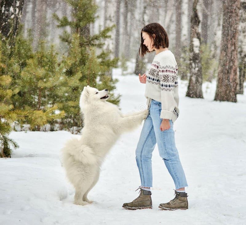 Muchacha en el bosque del invierno que camina con un perro La nieve está cayendo fotografía de archivo