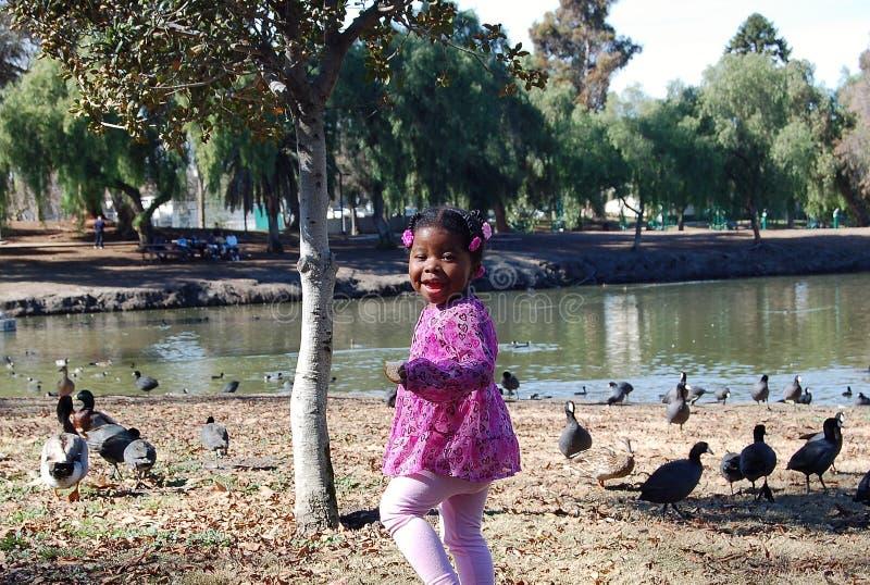Muchacha en el lago 3 foto de archivo