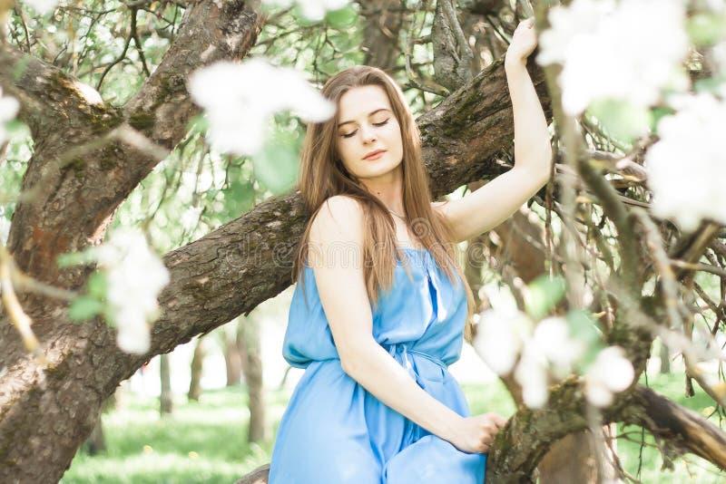 Muchacha en el manzanar del borrachín en primavera foto de archivo