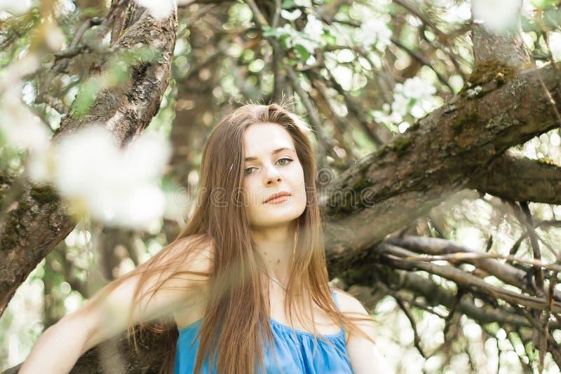 Muchacha en el manzanar del borrachín en primavera foto de archivo libre de regalías