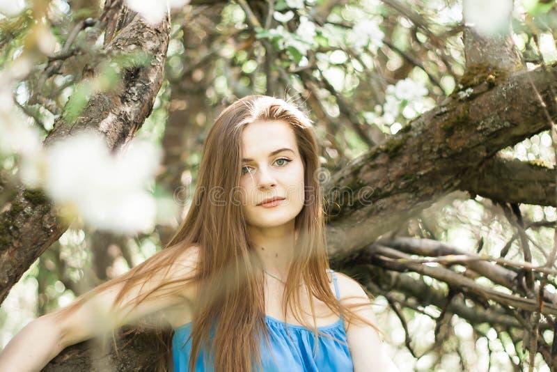 Muchacha en el manzanar del borrachín en primavera fotos de archivo libres de regalías