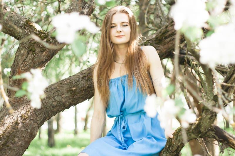 Muchacha en el manzanar del borrachín en primavera fotografía de archivo libre de regalías
