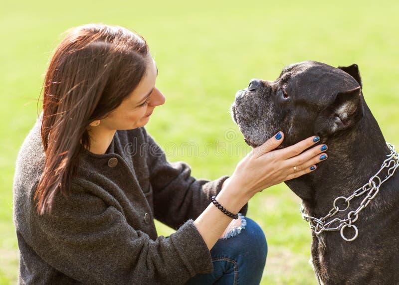 Muchacha en el parque que camina con su perro grande Cane Corso imagenes de archivo