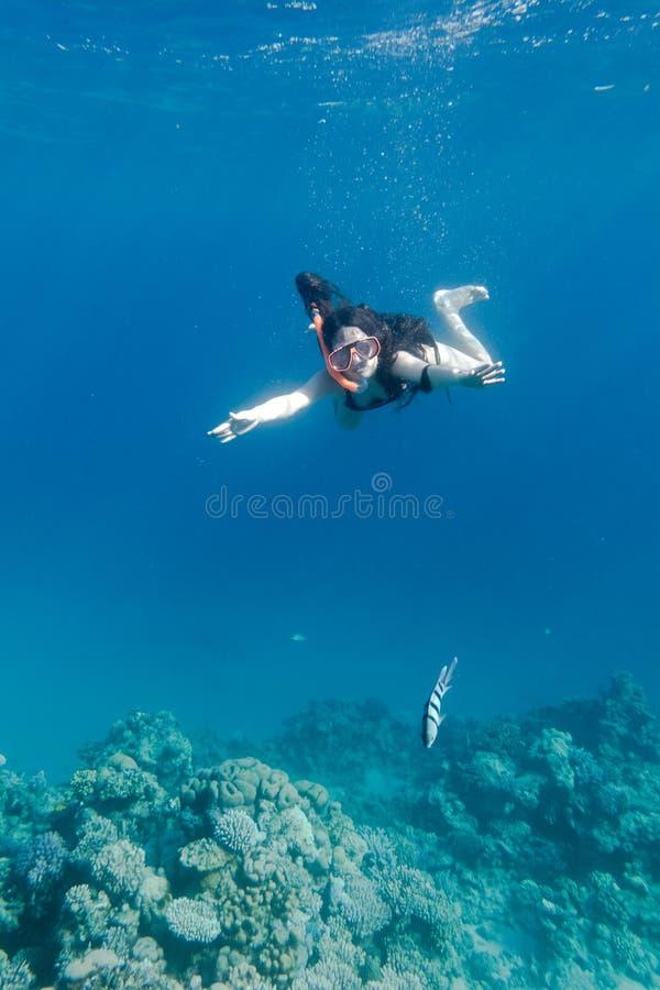 Muchacha en el salto de la máscara de la natación en el Mar Rojo cerca del arrecife de coral fotografía de archivo