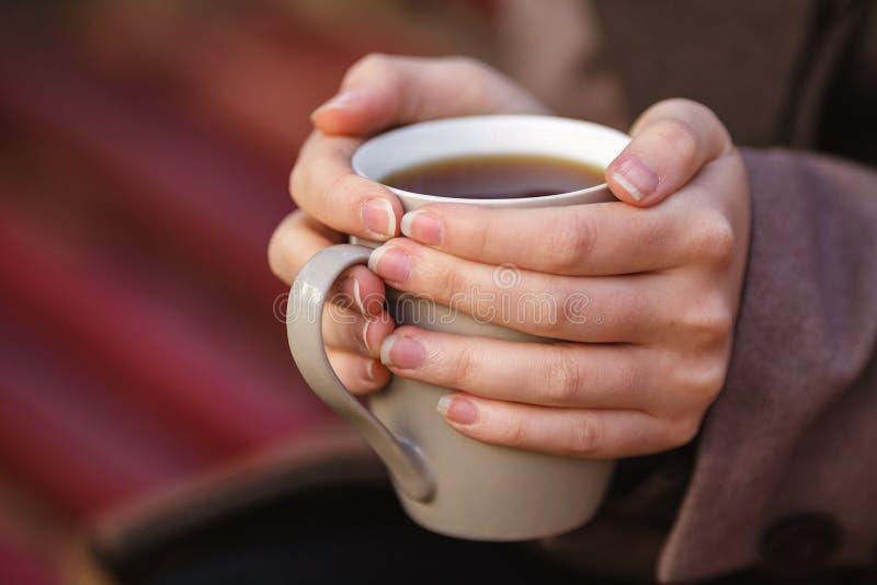 Muchacha en la chaqueta que se sienta en el banco, sosteniendo un café o un té, a imagen de archivo libre de regalías