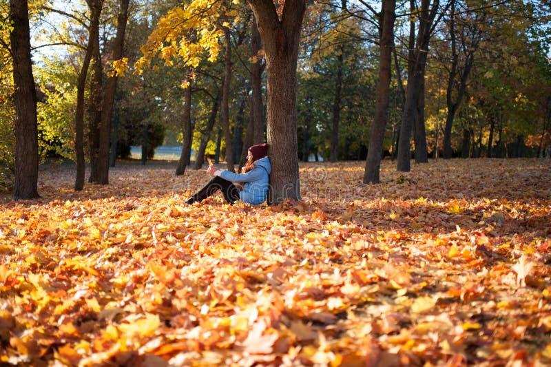 Muchacha en la situación hermosa de la mujer elegante del bosque del otoño en un parque en otoño fotos de archivo